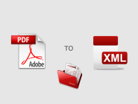 PDF Invoice to XML Conversion for Invoice Automation